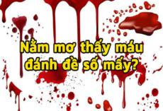 Nằm mơ thấy máu có ý nghĩa gì? Đánh con gì?